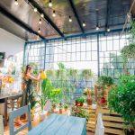 5 homestay xinh xắn như quán cà phê ở Hà Nội cho kỳ nghỉ