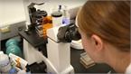 Thử nghiệm hạt nano chứa axit nucleic vào điều trị ung thư não