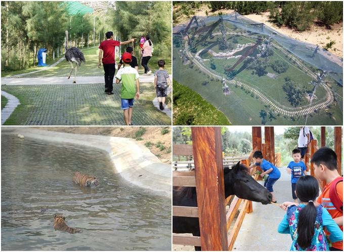 Giải nhiệt mùa hè trên 6 công viên chủ đề từ Bắc vào Nam - 2