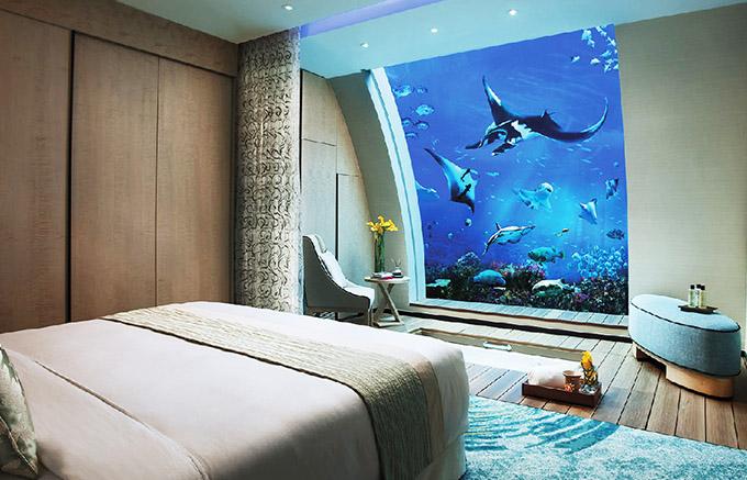 Khách sạn nơi bạn trải nghiệm `ngủ` dưới thuỷ cung ở Singapore