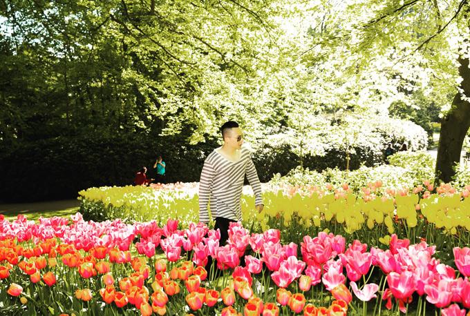 Anh cảm thấy hơi may mắn lúc vẫn kịp ngắm hoa tulip nở trong các ngày đầu hè.