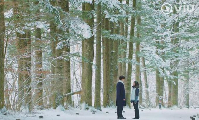 Con đường dài hơn 1km nằm giữa rừng thông dẫn vào ngôi chùa trở nên nức tiếng khi xuất hiện trong phim Golbin (Yêu tinh). Khung cảnh cả rừng thông được bao phủ đầy tuyết trắng hết sức lãng mạn là nơi