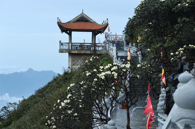 Suốt dọc đường La Hán lên khu tâm linh, đỗ quyên nở vàng, thể tích thanh khiết.